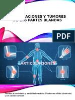 articulaciones y tumores de partes blandas