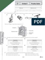 Avanza Ciencias 4 Pruebas Saber.pdf