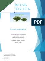 sintesis energetica.pptx