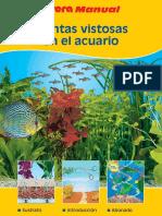 plantasvistosasenelacuario-130628122233-phpapp02