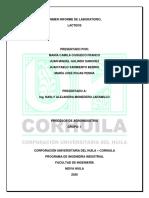 INFORME LABORATORIO DE PROCESOS.pdf