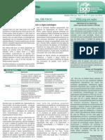 Boletim PDG.org 2aquinz-Nov2010