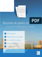 2014_01_13_expense_reporting_in_five_steps_mx.pdf