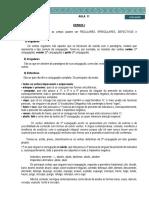 D360 - Lingua Portuguesa (m. Hera) - Material de aula - 11 (Isabel V.)1
