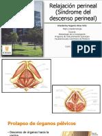 Síndrome de descenso perineal