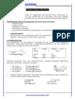 04-conectores-logicos-sexto-de-primaria.doc