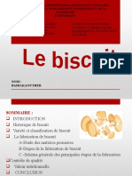 BISCUIT.pptx