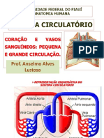 SISTEMA CIRCULATÓRIO completo.pdf