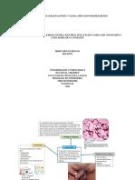 ENFERMEDADES ULCERATIVAS PENE Y VAGINA, INFECCION POR HEPATITIS B