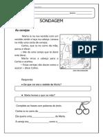 Sondagem de LP adaptada para português brasileiro.pdf
