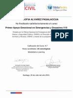 PRIMER APOYO PSICOLOGICO