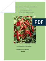 texto de horticultura word 11 de abril de 2020