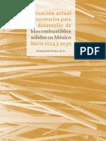 BIOCOMBUSTIBLES SÓLIDOS HACIA 2024 Y 2030 EN MÉXICO_LIBRO