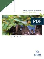 Painel MEG Gestão Suzano.pdf