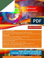 Los colores de la Alianza2