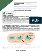 Taller Ecosistemas y redes tróficas_10ºRECESO CONTIENGENCIA COVID-19.pdf