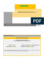 ORIENTACION EDUCATIVA VI