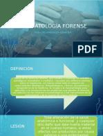 TRAUMATOLOGÍA FORENSE.pptx