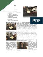 Desarrollo experimenta Lab 6.docx