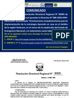 RESOLUCION DIRECTORAL REGIONAL