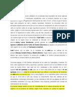 TRABAJO DE CAFE ultimo2.docx