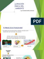 VALORIZACION ECONOMICA DEL MEDIO AMBIENTE.pdf
