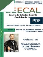 ESE_08_Capitulo_VIII  (1)