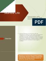 Skandia Evidencia 3.pptx