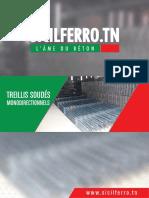 Treillis-Soudes-Monodirectionnels