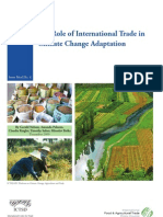 The Role of International Trade in Climate Change Adaptation