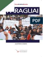 O_Paraguai_e_as_trajetorias_da_esquerda (1).pdf