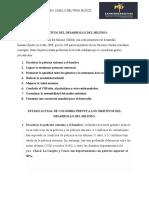 Desarrollo del Milenio.docx