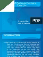 Project of Mushroom Farming & Preserving