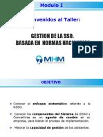 GSSO-Modulo-I.pdf
