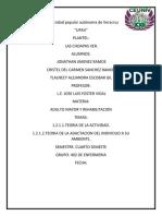 UNIVERSIDAD P0PLURAL AUTONOMA DE VERACRUZ ADULTO MAYOR ensayo