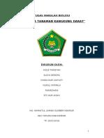 BUDIDAYA_TANAMAN_KANGKUNG_DARAT.doc