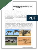 CINEMÁTICA DE LA LOCOMOCIÓN DE LOS ANIMALES