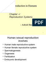 Sexual Reproduction in Humans -I