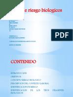 CARTILLA  DE RIESGO BIOLOGICO 3 - 3