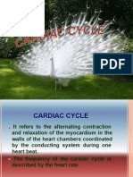 Cardiac Cycle 2