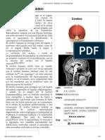 Cerebro humano - Wikipedia, la enciclopedia libre.pdf