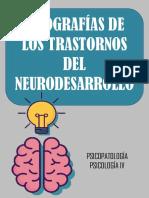 INFOGRAFÍAS DE LOS TRASTORNOS DEL NEURODESARROLLO