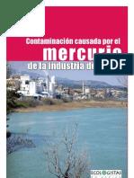 Informe EA Contaminacion Mercurio causada por la industria del cloro