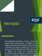 necropsiamedicolegal