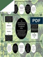 Mapa mental Biorremediación.pdf