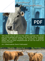 The Global Importance of Cow Protection
