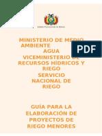 GUIA RIEGO MENOR 1.docx