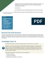 FEMA Lesson 5 Overview