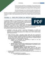E1 - Insuficiencia Medular I (T1)