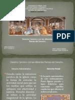 derecho canonico  con las diferentes ramas del derecho